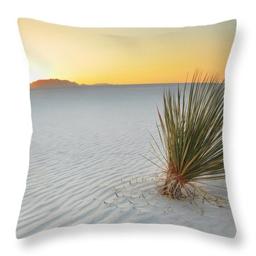 Yucca Plant At White Sands Throw Pillow by Alan Vance Ley