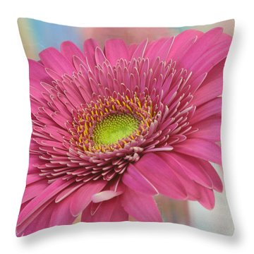 Gerbera Daisy Macro Throw Pillow