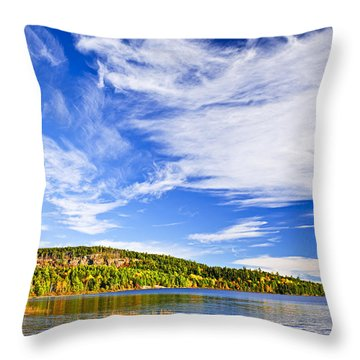 Fall Forest And Lake Throw Pillow by Elena Elisseeva