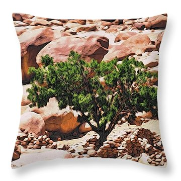 Stone Stories Throw Pillow by Alexandre Ivanov