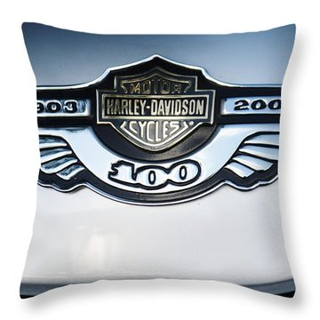 100 Years Throw Pillow by Craig Wood