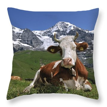 100205p181 Throw Pillow
