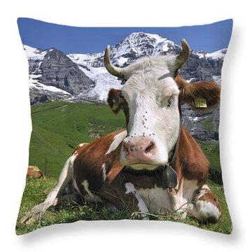 100205p182 Throw Pillow