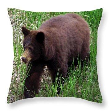 100414 Black Bear Throw Pillow