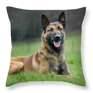 101130p018 Throw Pillow