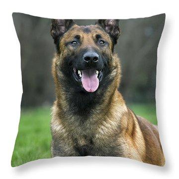 101130p022 Throw Pillow