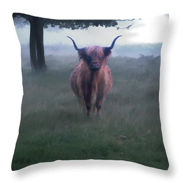 11. Highland Throw Pillow