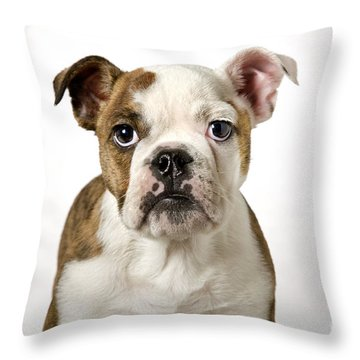 110307p153 Throw Pillow