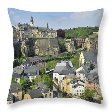 110414p202 Throw Pillow