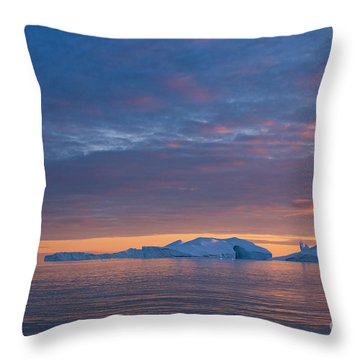 110613p176 Throw Pillow