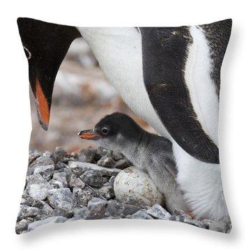 111130p165 Throw Pillow