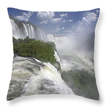 111230p122 Throw Pillow