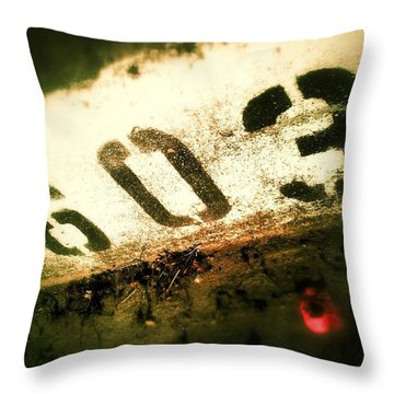 11603 Throw Pillow by Olivier Calas
