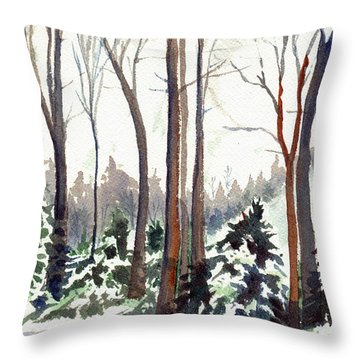12 Below Throw Pillow