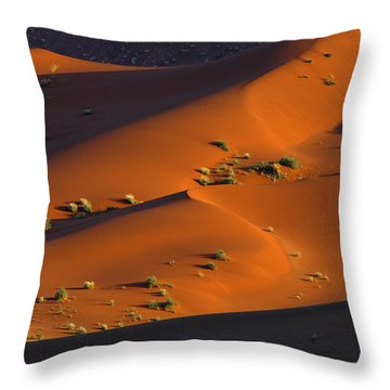 120118p071 Throw Pillow by Arterra Picture Library