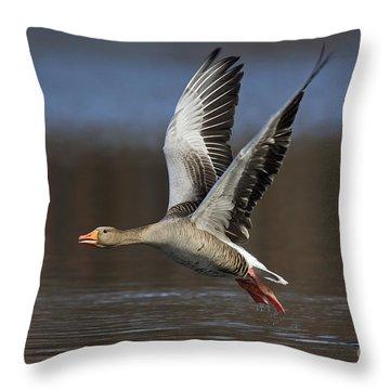 120223p134 Throw Pillow