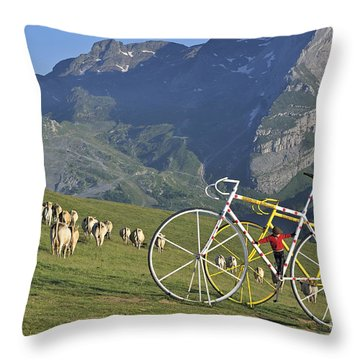 120520p230 Throw Pillow