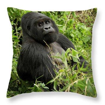 Critically Endangered Throw Pillows