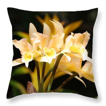 Orchids Throw Pillow by John Freidenberg