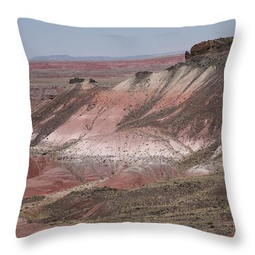 Painted Desert Throw Pillow by Frank Romeo