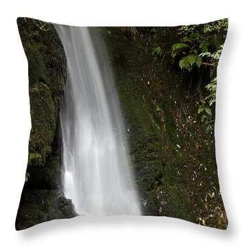 Waterfall Throw Pillow by Les Cunliffe