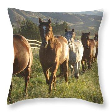 Montana  Big Sky Throw Pillow