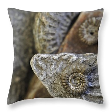 Throw Pillow featuring the photograph 130109p053 by Arterra Picture Library