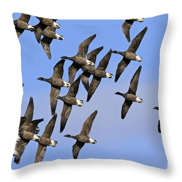 Throw Pillow featuring the photograph 130109p166 by Arterra Picture Library