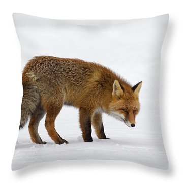 Throw Pillow featuring the photograph 130201p051 by Arterra Picture Library