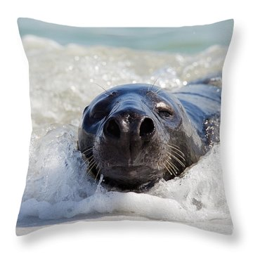 Throw Pillow featuring the photograph 130201p142 by Arterra Picture Library