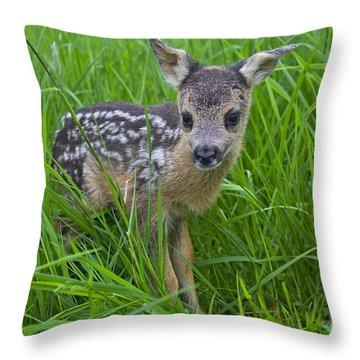 131018p162 Throw Pillow