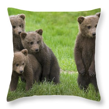 131018p260 Throw Pillow
