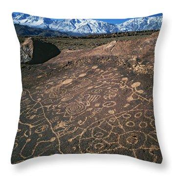 Curvilinear Throw Pillows