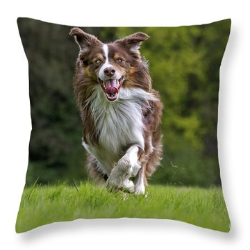 140420p079 Throw Pillow