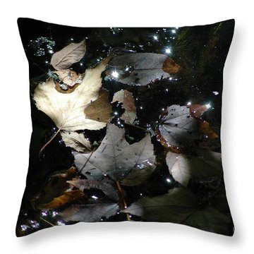 Throw Pillow featuring the photograph Autumn Light by Christiane Hellner-OBrien