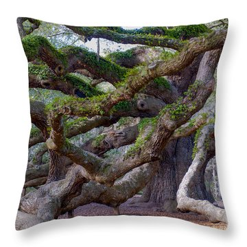 Angel Oak Tree Unique View Throw Pillow