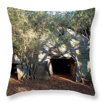 Throw Pillow featuring the photograph 1940's Barn by Pete Trenholm