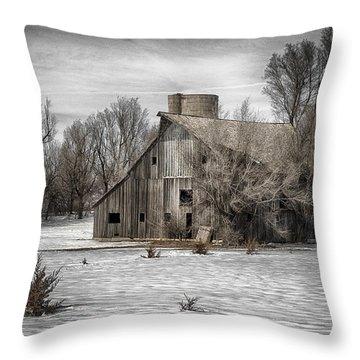 2016 Art Series #23 Throw Pillow