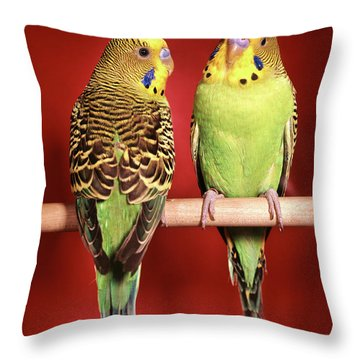 1960s Pair Of Two Yellow Green Throw Pillow