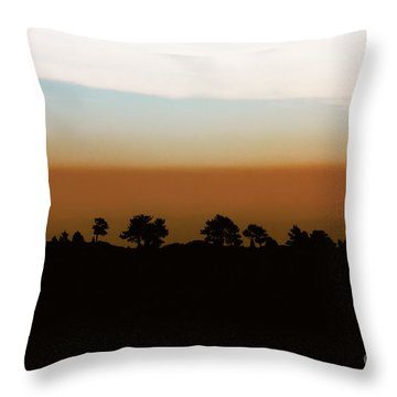 Throw Pillow featuring the photograph 1974 by Dana DiPasquale