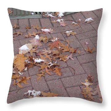 1st Snow Detail Throw Pillow