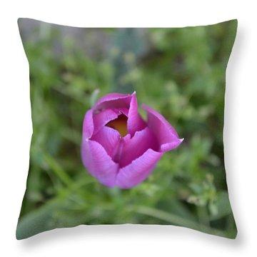 1st Spring Throw Pillow