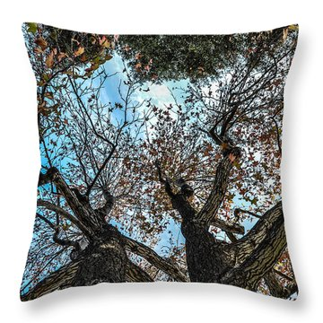 1st Tree Throw Pillow by Gandz Photography