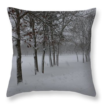 2 2014 Winter Of The Snow Throw Pillow