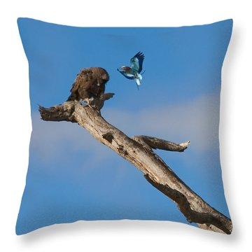 A Confrontation Throw Pillow by J L Woody Wooden