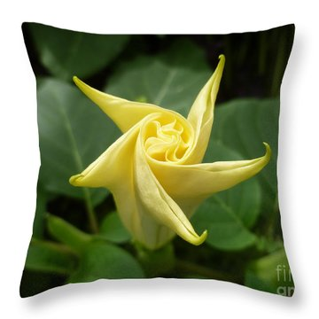 A Star Is Born 001 Throw Pillow