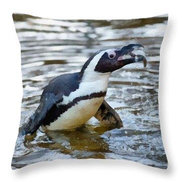 African Penguin Home Decor