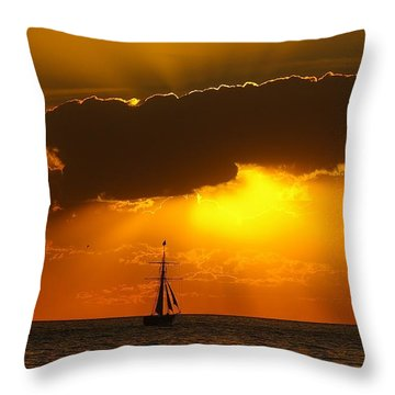 After The Storm Throw Pillow by Randy Pollard