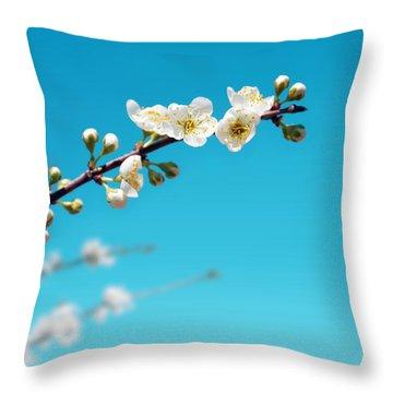 Almond Branch Throw Pillow by Carlos Caetano