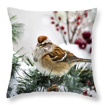 Christmas Sparrow Throw Pillow by Christina Rollo